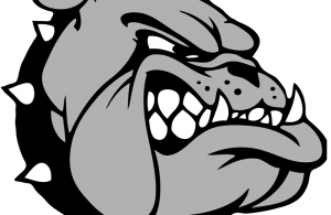 bulldog1.fw